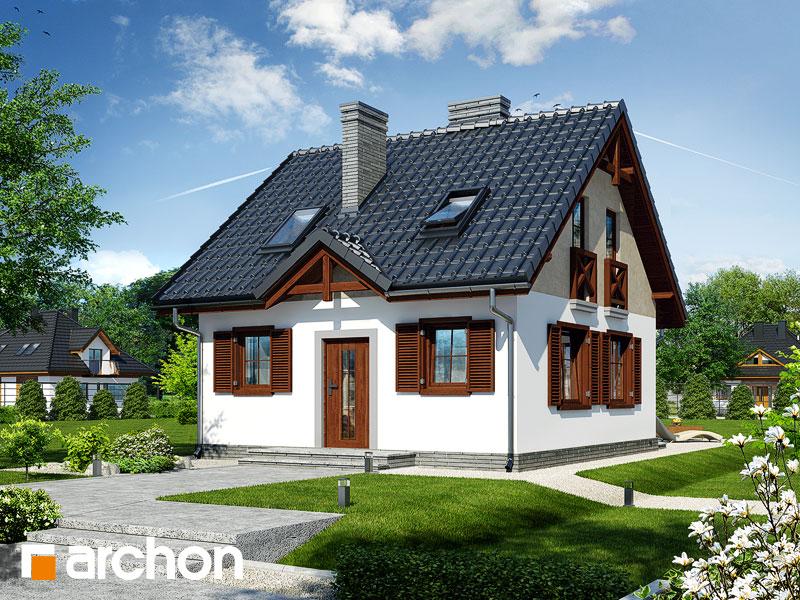 gotowy projekt Dom w borówkach widok 1