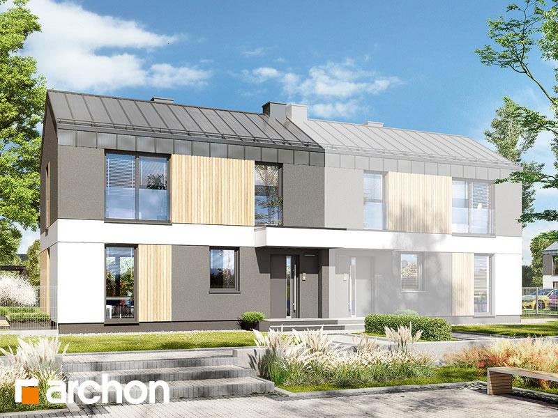 gotowy projekt Dom w everniach (B) widok 1