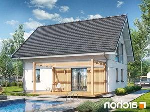 projekt Dom w zielistkach lustrzane odbicie 1