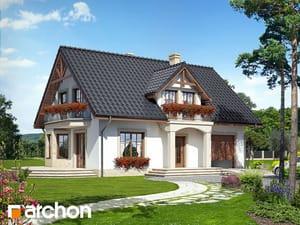 projekt Dom w aksamitkach 2