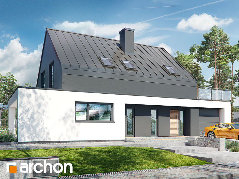 gotowy projekt Dom w dipladeniach widok 1