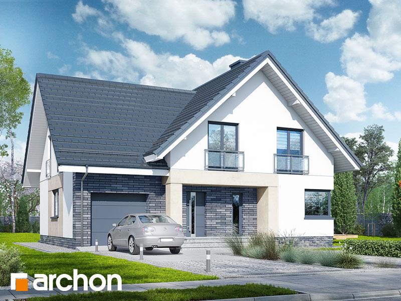 gotowy projekt Dom w orliczkach (P) widok 1