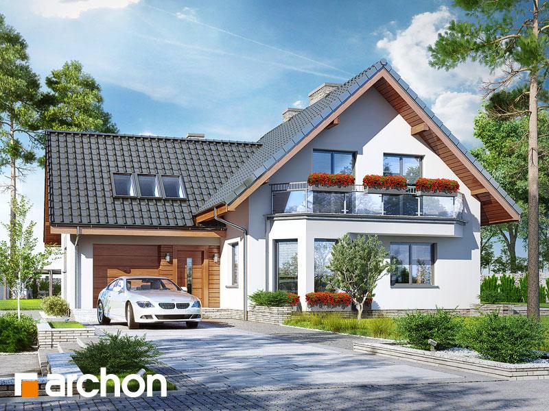 gotowy projekt Dom na polanie 3 (P) widok 1