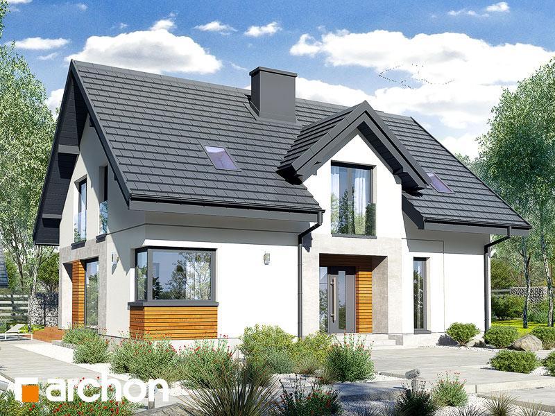gotowy projekt Dom w srebrzykach 3 widok 1