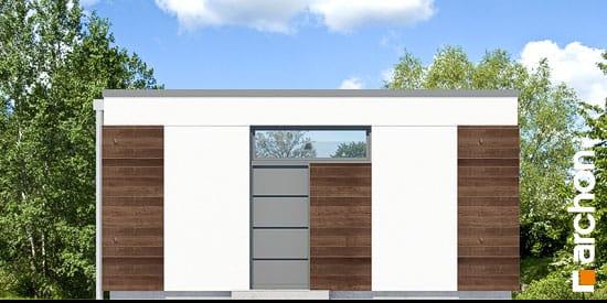 Elewacja ogrodowa projekt garaz 2 stanowiskowy g21  267