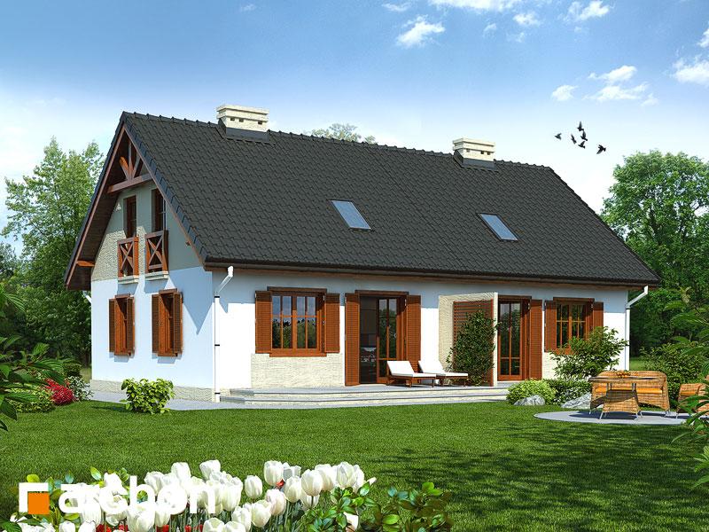 gotowy projekt Dom w borówkach (R2) widok 1