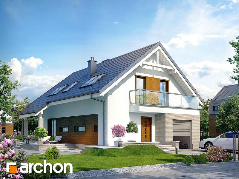 gotowy projekt Dom w avenach widok 1