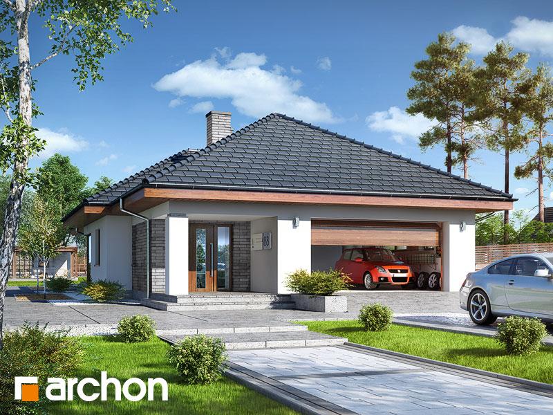gotowy projekt Dom w modrzewnicy (G2) widok 1