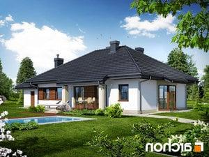 projekt Dom w gaurach (N) lustrzane odbicie 2