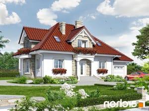 projekt Dom w kaliach lustrzane odbicie 1