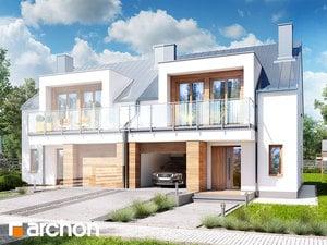 projekt Dom w klematisach 22 (B)