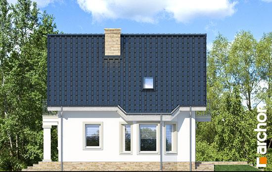 Elewacja boczna projekt dom w winogronach 2 p  265