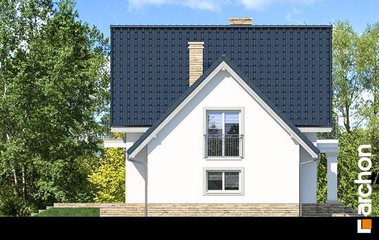 Elewacja boczna projekt dom w winogronach 2 p  266