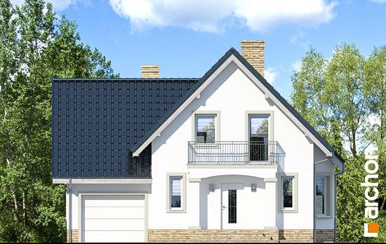 Elewacja frontowa projekt dom w winogronach 2 p  264