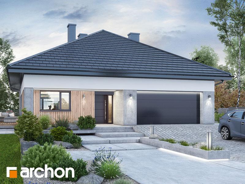 gotowy projekt Dom w renklodach 16 (G2) widok 1