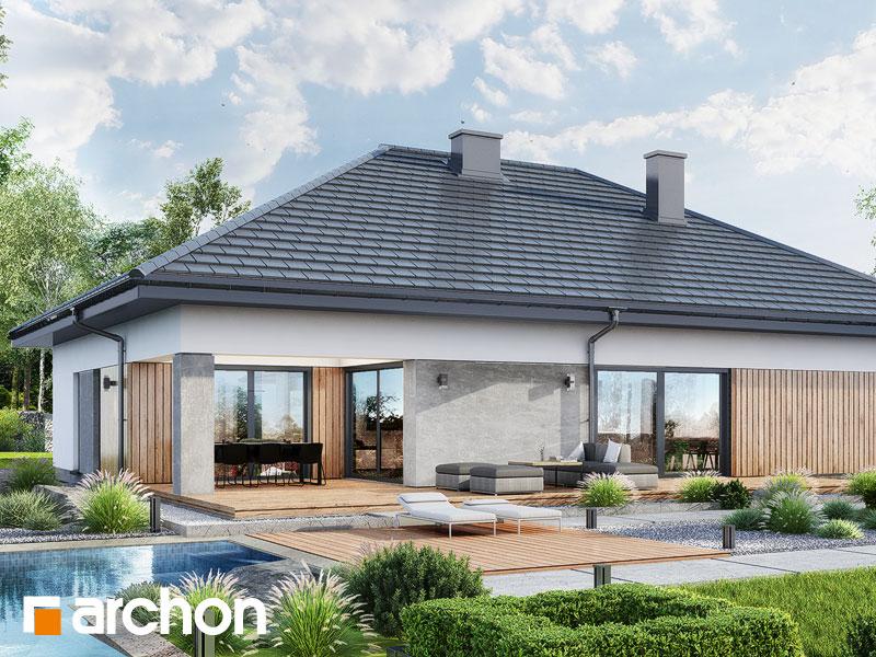 gotowy projekt Dom w renklodach 16 (G2) widok 2