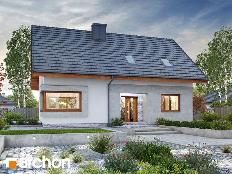 gotowy projekt Dom w zdrojówkach 2 widok 1