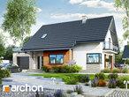 projekt Dom w aurorach 4 Stylizacja 3