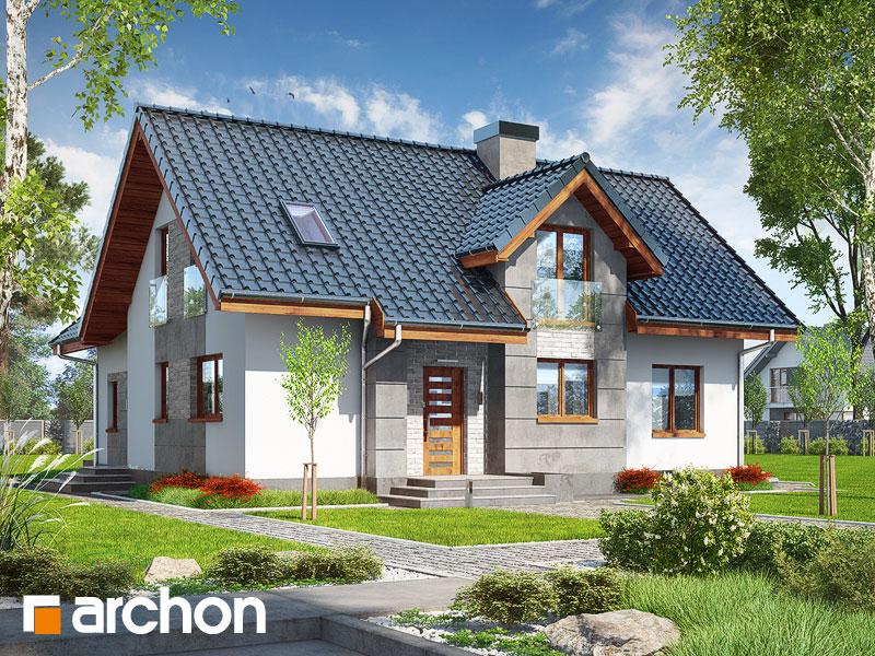 gotowy projekt Dom w mniszkach 2 (P) widok 1