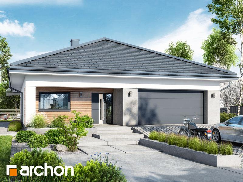 gotowy projekt Dom w renklodach 11 (G2) widok 1