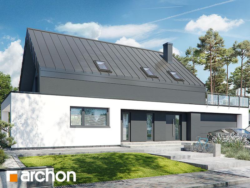 gotowy projekt Dom w dipladeniach 4 (G2E) widok 1