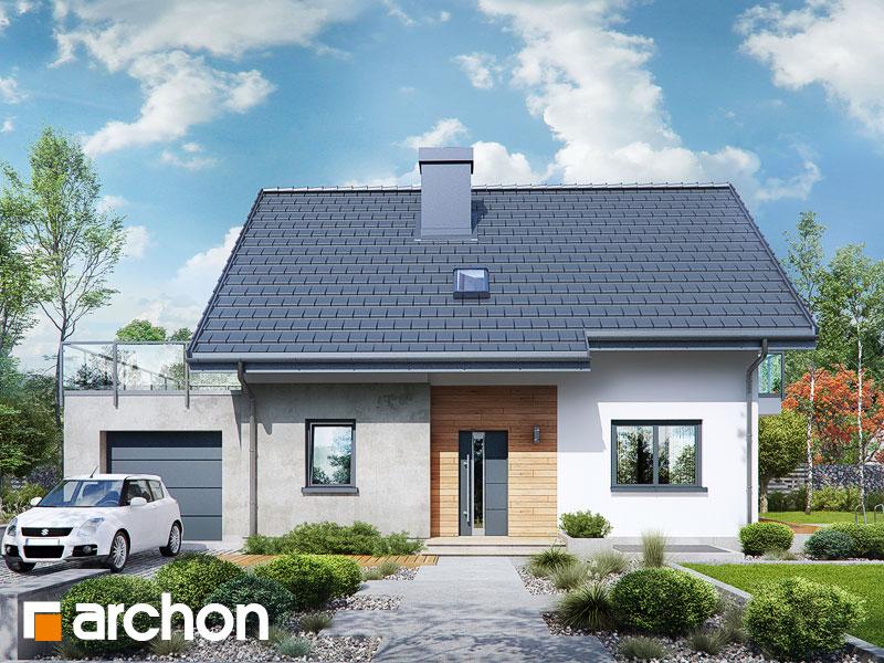 gotowy projekt Dom w zielistkach (GPN) widok 1