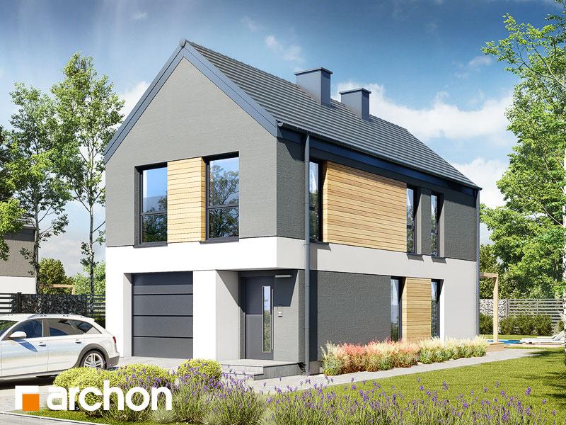 gotowy projekt Dom w ribesach 2 (G) widok 1