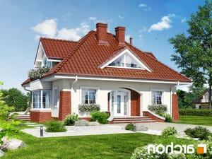projekt Dom w koniczynce lustrzane odbicie 1