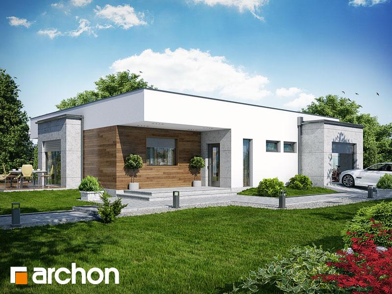 gotowy projekt Dom w parrocjach widok 1