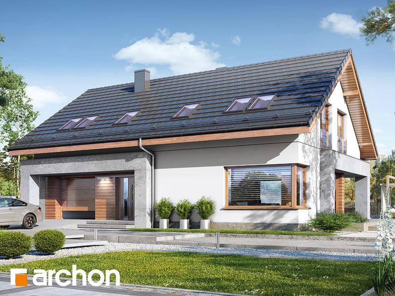 gotowy projekt Dom we florinach widok 1