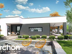 projekt Dom w peperomiach dodatkowa wizualizacja
