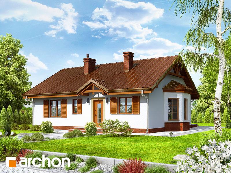 gotowy projekt Dom w jeżynach 2 widok 1