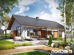 projekt Dom w mekintoszach (WP) lustrzane odbicie 1