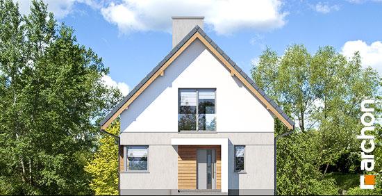 Elewacja frontowa projekt dom na wzgorzu n  264