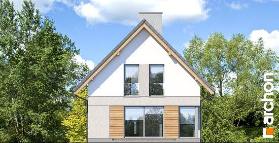 Elewacja ogrodowa projekt dom na wzgorzu n  267