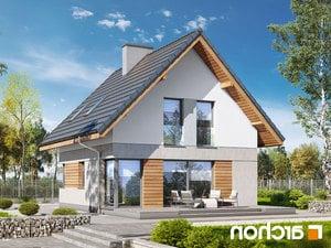 projekt Dom na wzgórzu (N) lustrzane odbicie 2