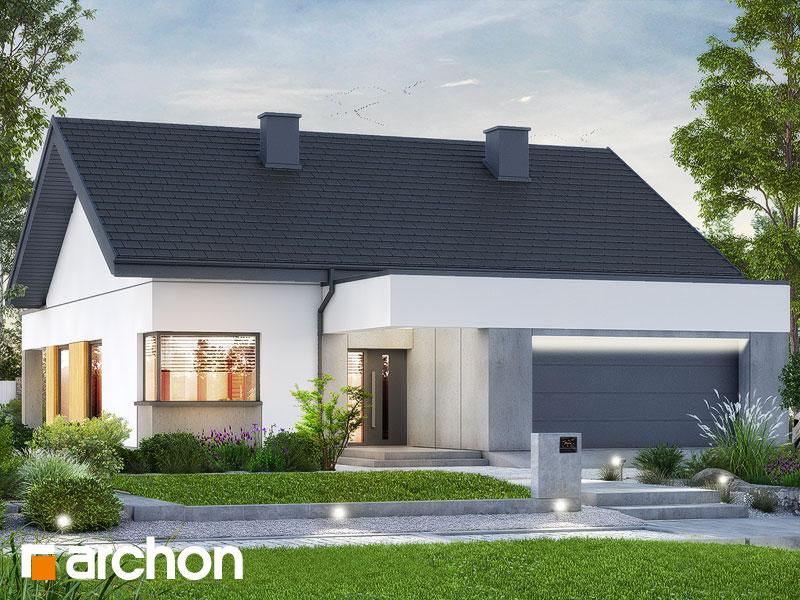 gotowy projekt Dom w renklodach 19 (G2) widok 1