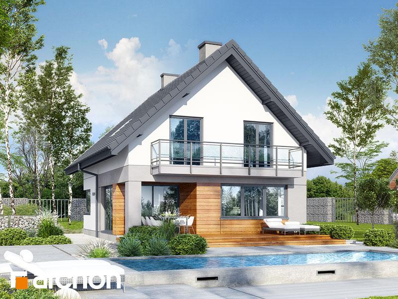 gotowy projekt Dom w topazach widok 1