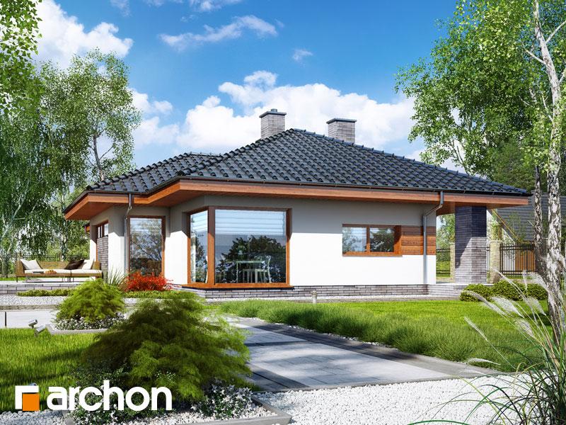 gotowy projekt Dom w amarantusach 5 widok 1