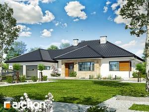 projekt Dom w akebiach 2
