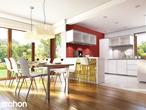 projekt Dom w tamaryszkach 2 (N) Strefa dzienna (wizualizacja 1 widok 1)