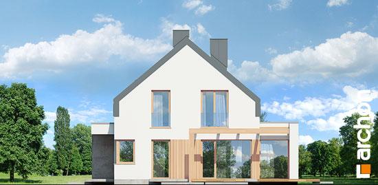 Elewacja boczna projekt dom w aurorach n  265