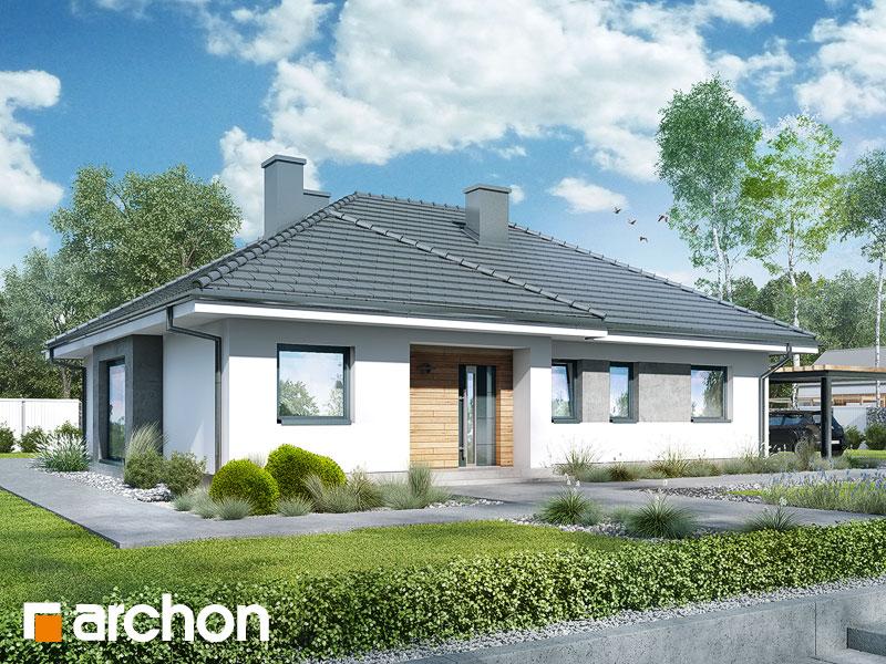 gotowy projekt Dom w bodziszkach 2 (T) widok 1