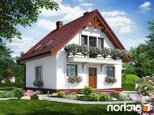 projekt Dom w rododendronach 11 lustrzane odbicie 1