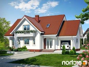 projekt Dom w lobeliach lustrzane odbicie 1