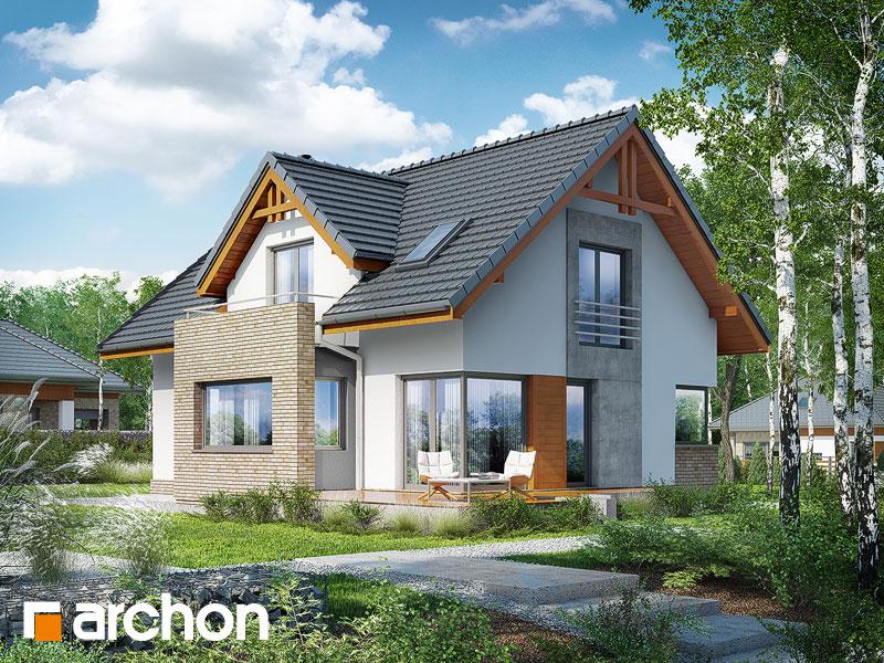 gotowy projekt Dom pod liczi 4 widok 1