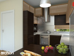 projekt Dom pod liczi Aranżacja kuchni 2 widok 2
