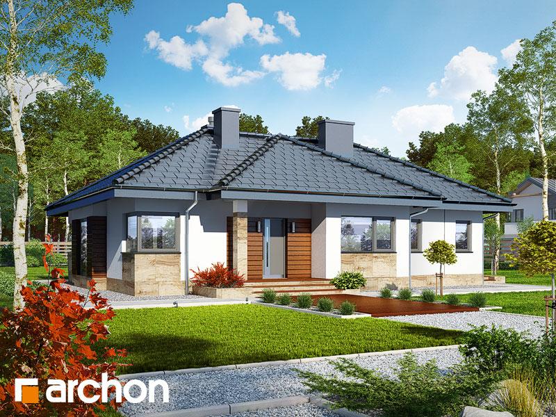 gotowy projekt Dom w gruszach (P) widok 1