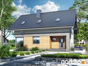 projekt Dom w cytryńcach (W) lustrzane odbicie 1
