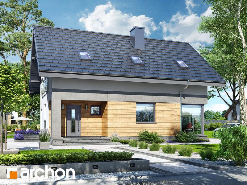 gotowy projekt Dom w cytryńcach (W) widok 1